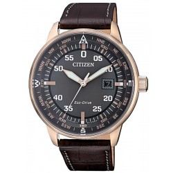 Buy Men's Citizen Watch Aviator Eco-Drive BM7393-16H